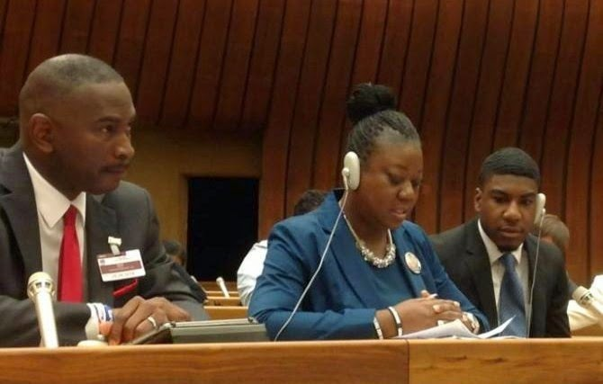 davis and fulton at UN
